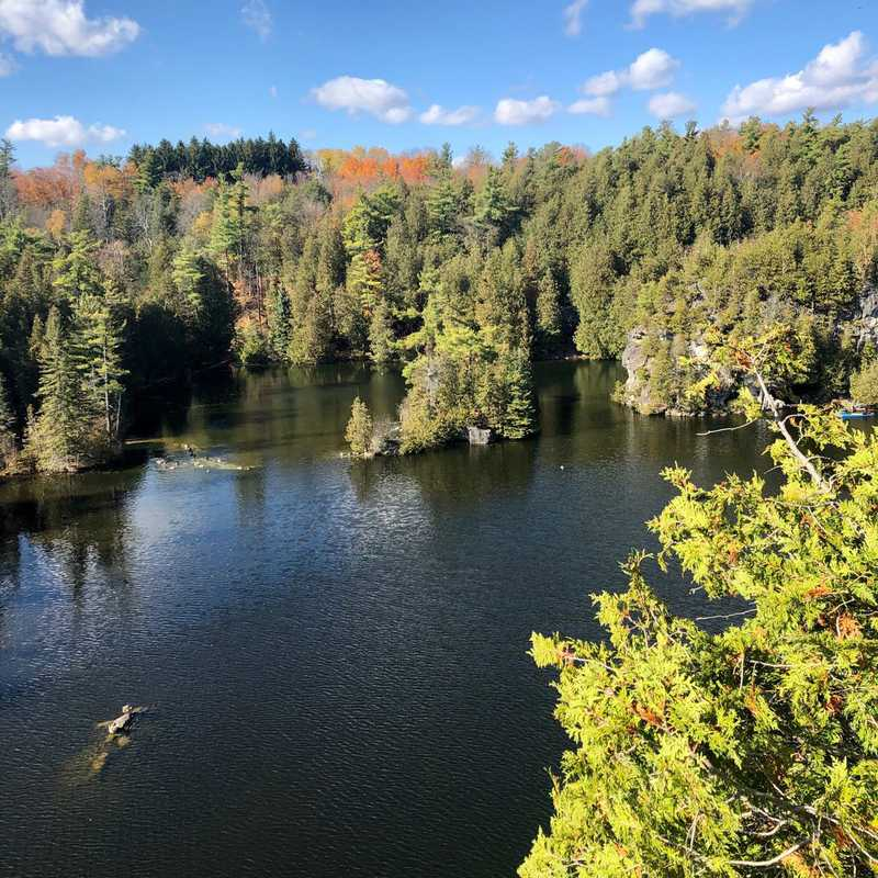 Trip Blog Post by @egoodwin: Day Trip to Guelph | 1 day in Oct (itinerary, map & gallery)
