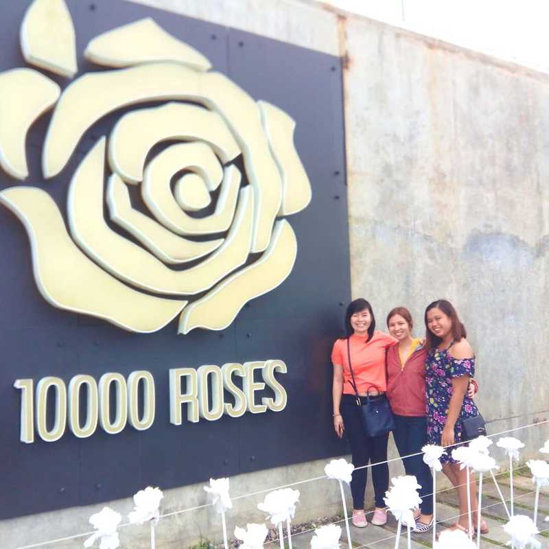 10,000 Roses Cafe & More