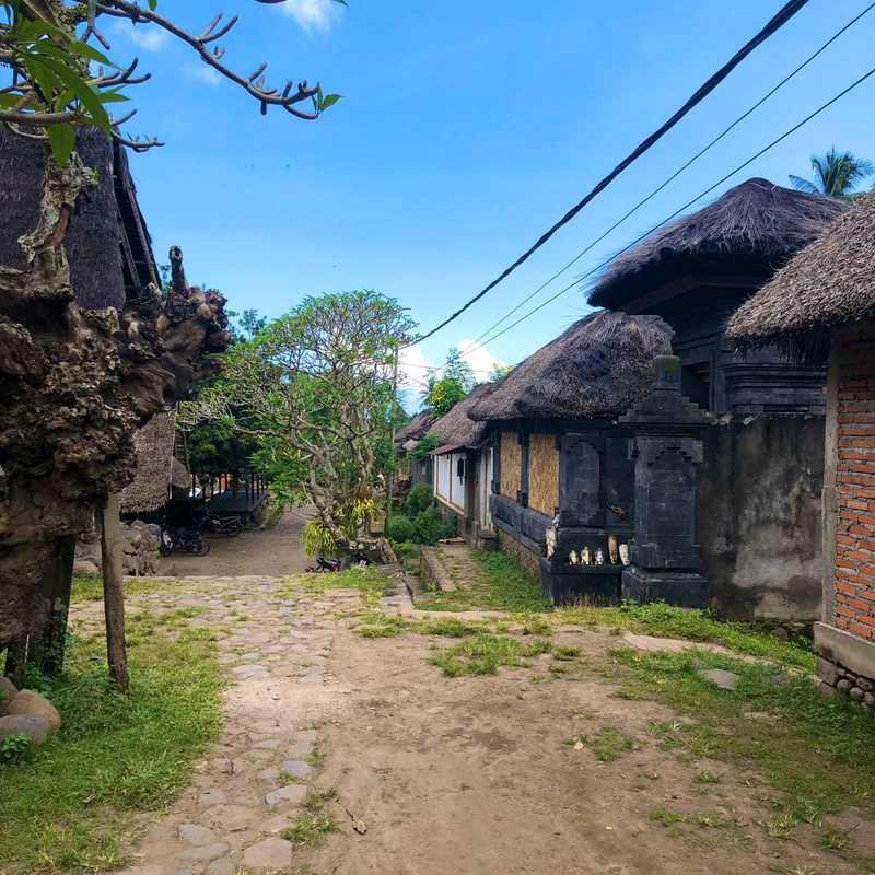 Tenganan Pegeringsingan Village