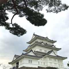 Kanagawa - Selected Hoptale Photos