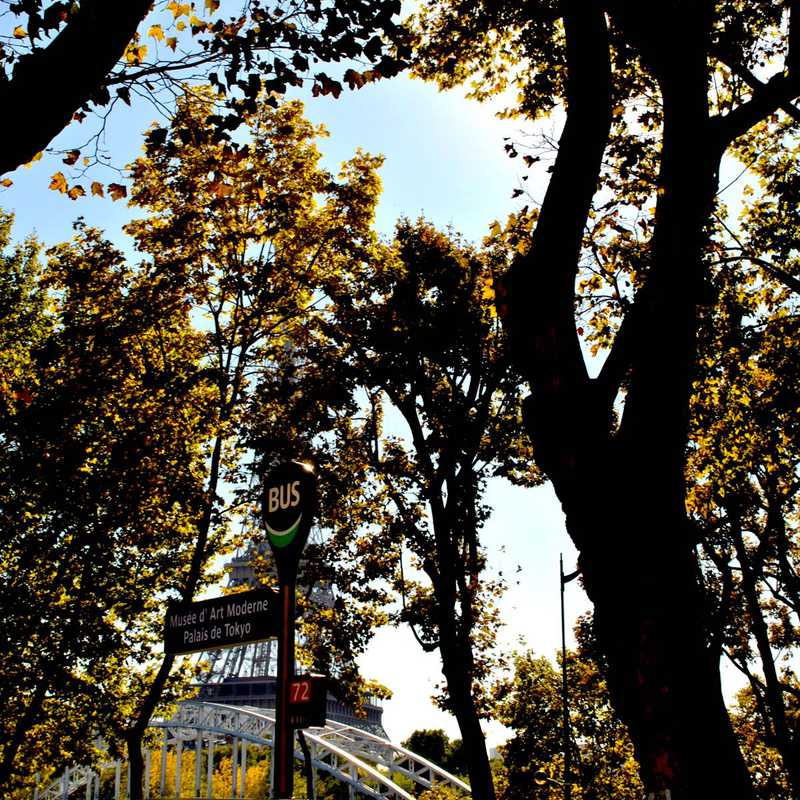 Trocadero Gardens