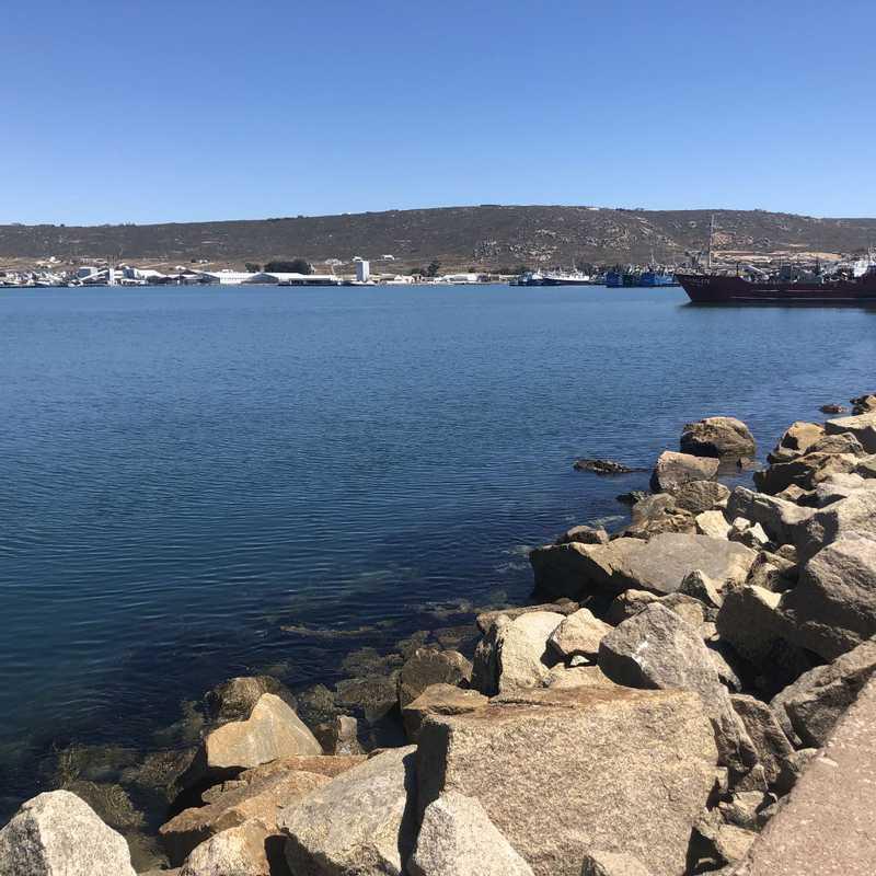 Harbour View Avenue