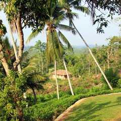 Southern Province (Sri Lanka)   Seleted Trip Photo