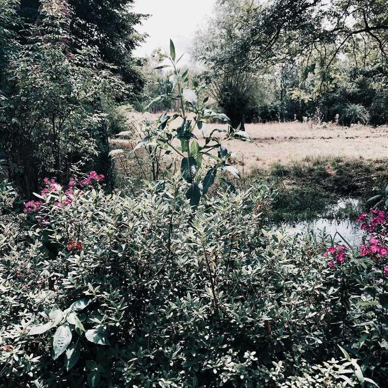 House of Claude Monet