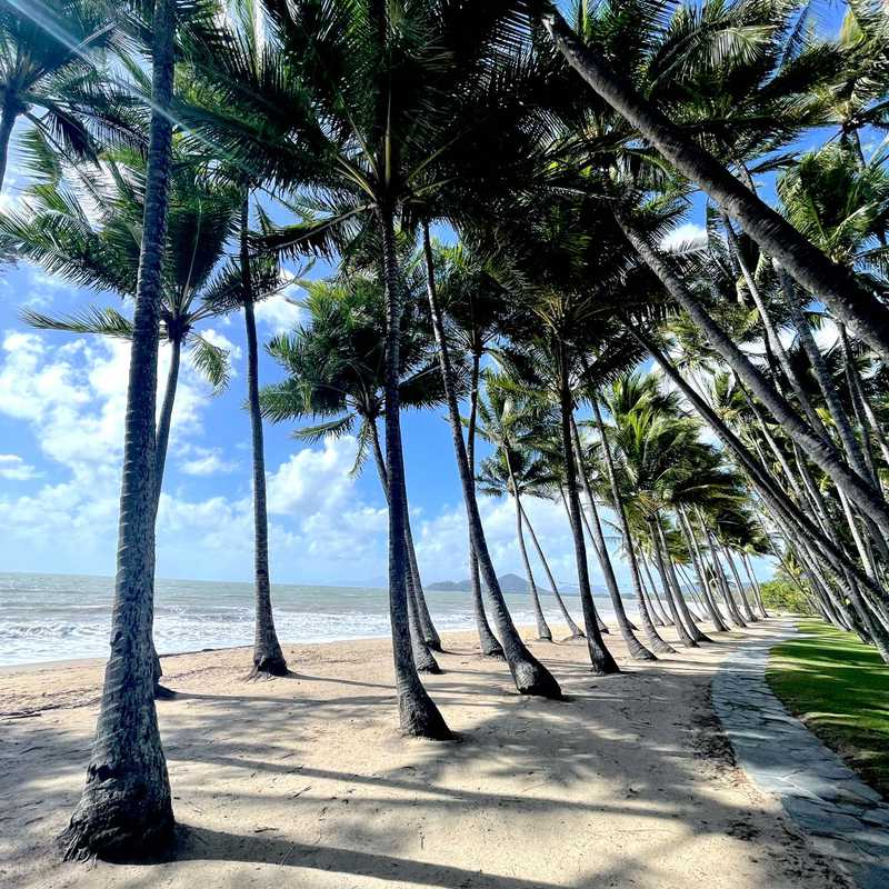Trip Blog Post by @eclaire59: Palm Cove Sept 21 | 3 days in Sep (itinerary, map & gallery)
