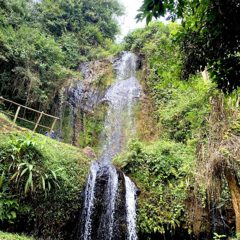 Trip Blog Post by @MissBee: Tigoni Waterfall | 1 day in Aug (itinerary, map & gallery)