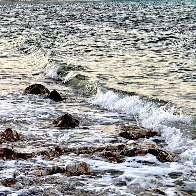 Al Sifah Beach
