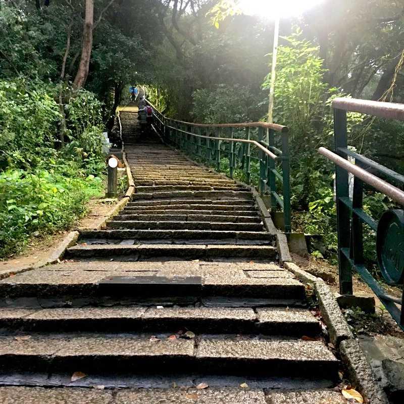 Elephant Mountain Hiking Trail