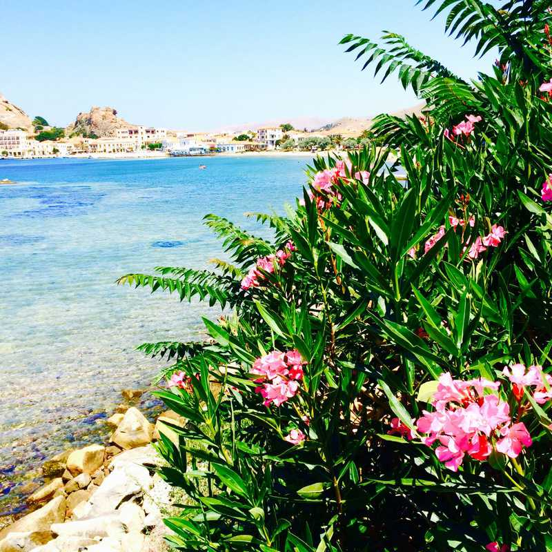 Trip Blog Post by @abigail: Greek Islands Cruise | 4 days in Jul (itinerary, map & gallery)