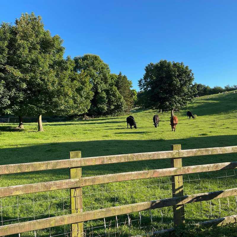 United Kingdom - Hoptale's Destination Guide