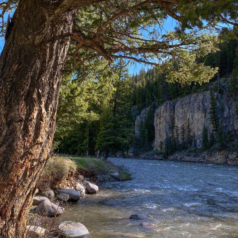 Caribou-Targhee National Forest
