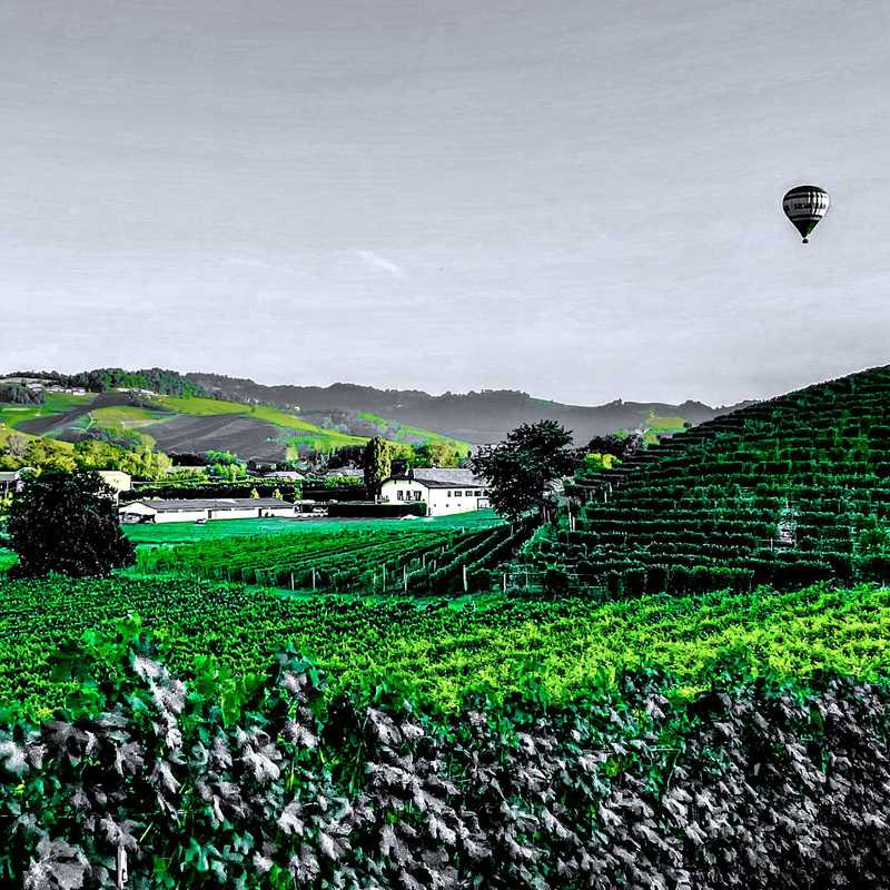 Agricamping - La Rosa nel Borgo