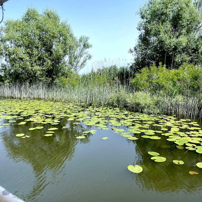Skadar Lake National Park