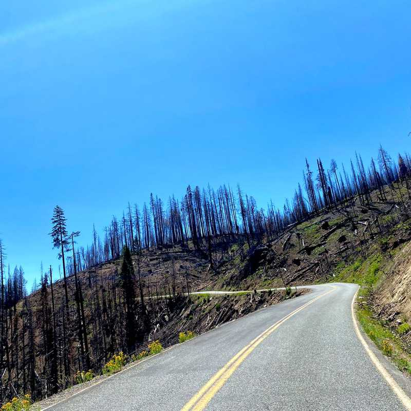 State Hwy 96