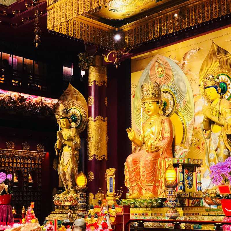 Chinatown and Buddha Tooth Relic Temple
