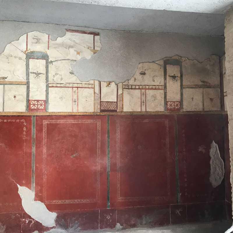 House of Menander - Excavations