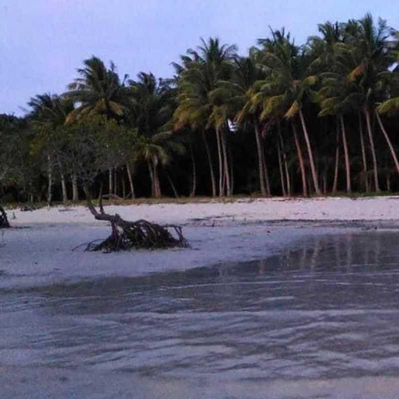 Binatican Island Palawan