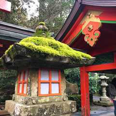Kanagawa (Japan) | Seleted Trip Photo