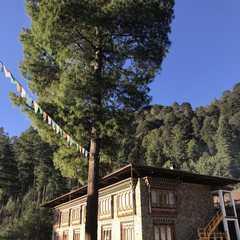Dewachen Hotel & Spa | POPULAR Trips, Photos, Ratings & Practical Information