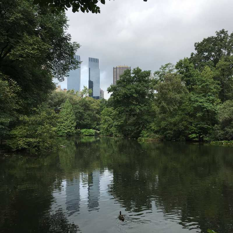 AKA Central Park