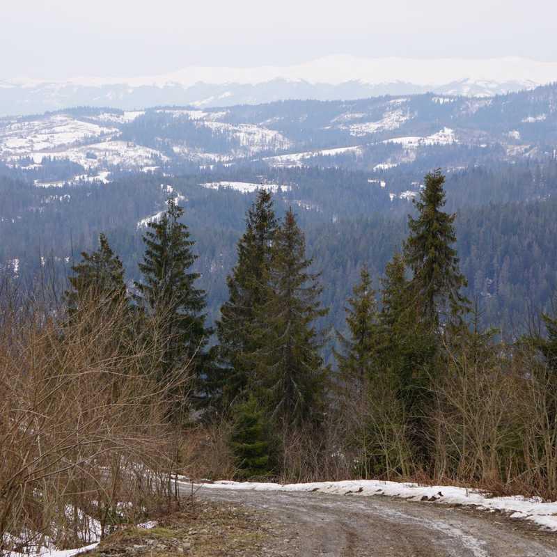 Tracts Ternivka