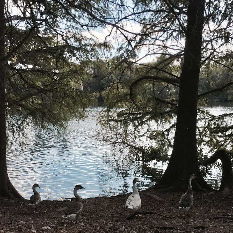 Lady Bird Lake Trail