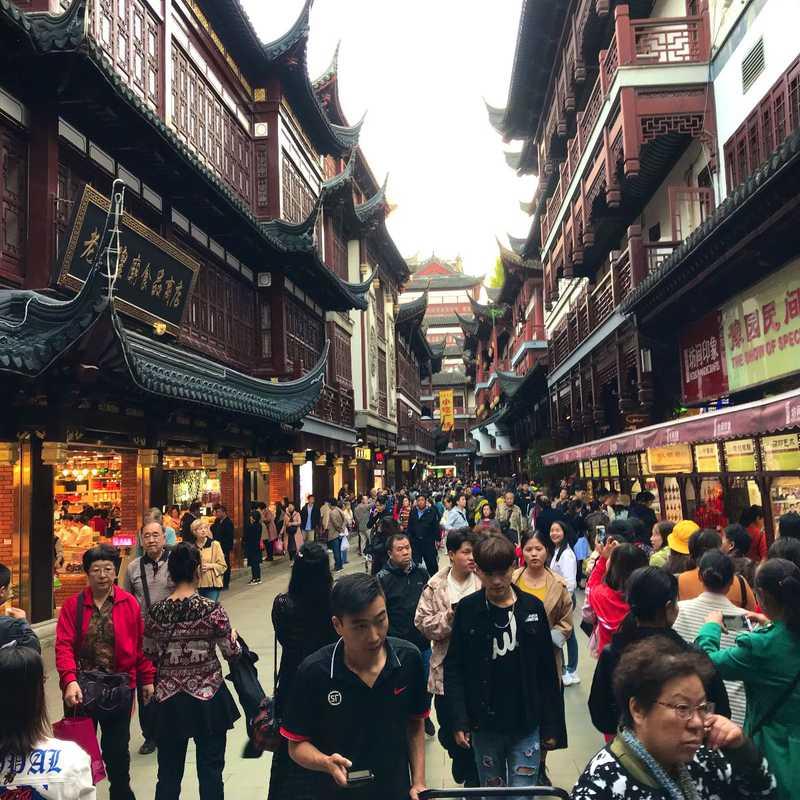 Hangzhou and Shanghai China  Autumn 2018 | 3 days trip itinerary, map & gallery