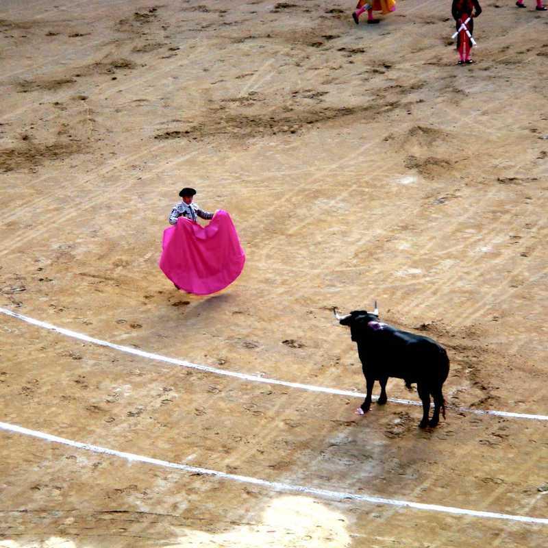 Bullfight @ Plaza de Toros de Las Ventas