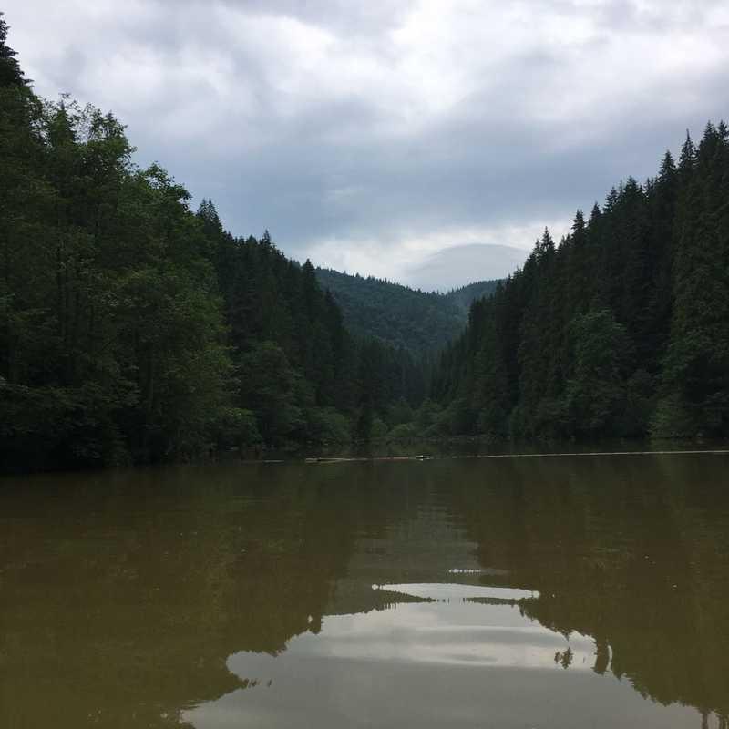 Trip Blog Post by @antonia: Transylvania 2019 | 3 days in Jun (itinerary, map & gallery)