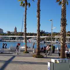 Porto de Málaga