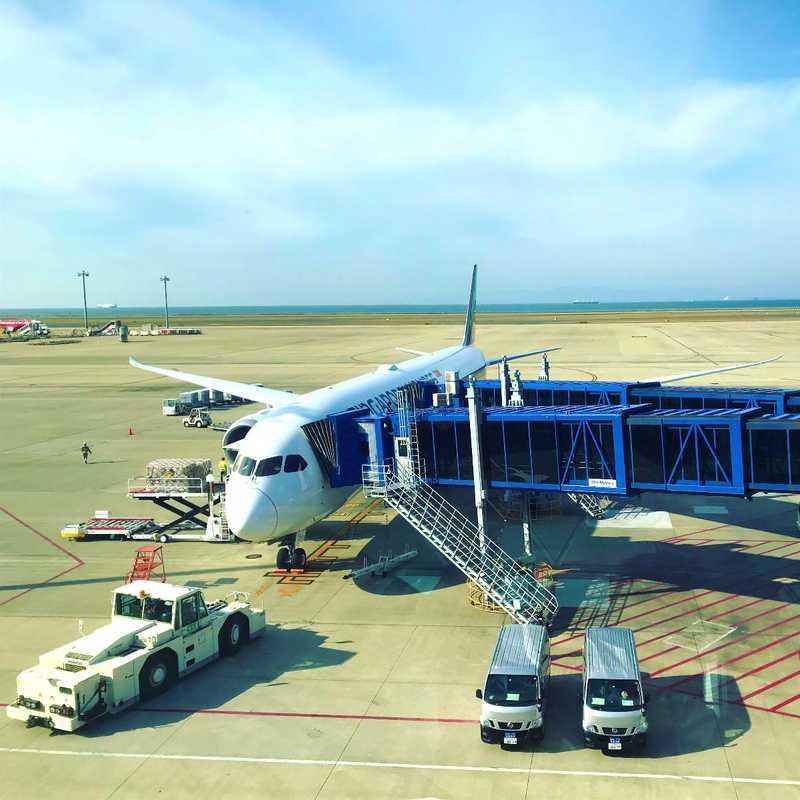 Central Japan International Airport (NGO)