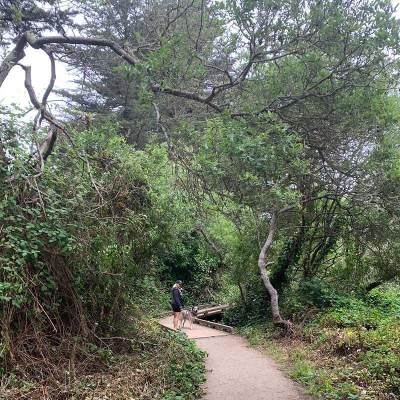 Lands End Trail