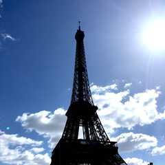 Vedettes de Paris | Travel Photos, Ratings & Other Practical Information