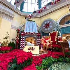 Bellagio Hotel and Casino - Photos by Real Travelers, Ratings, and Other Practical Information
