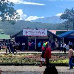 Feria de las Flores y el Café   POPULAR Trips, Photos, Ratings & Practical Information