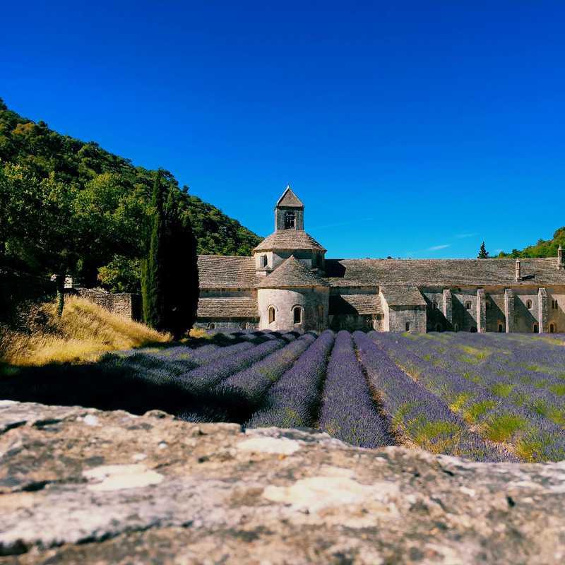 Visit Senanque Abbey