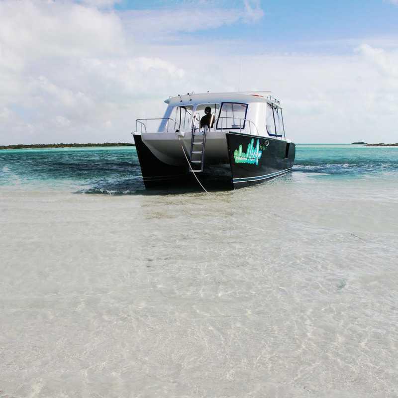 Island Vibes Snorkel Tour