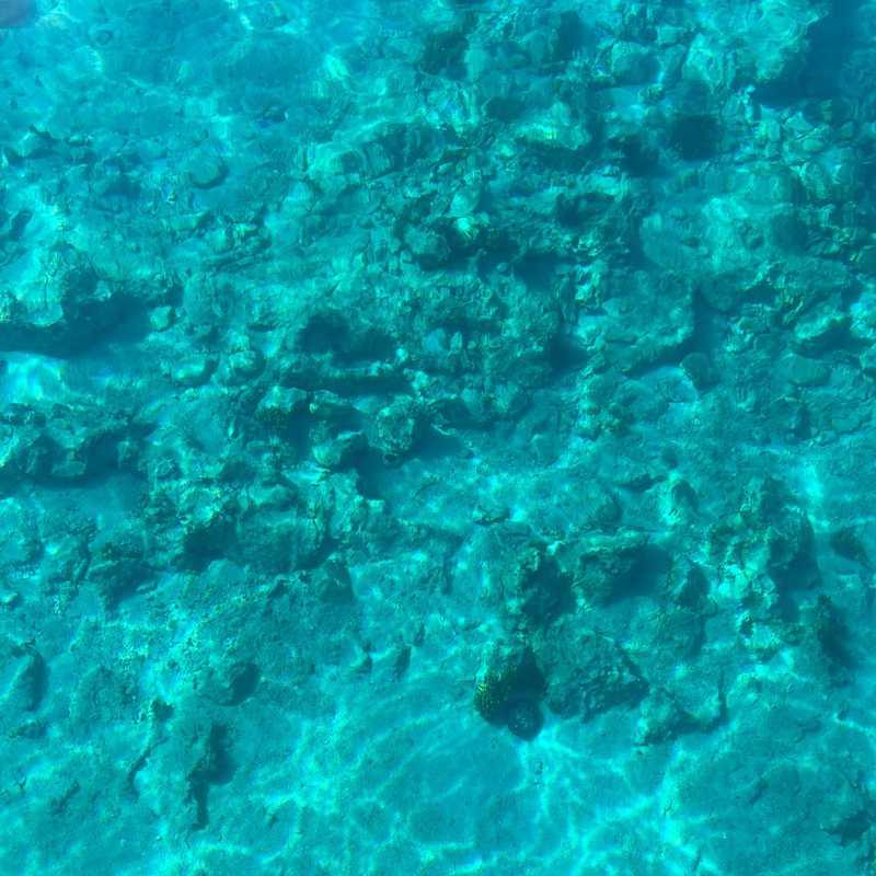 Sogut Adası