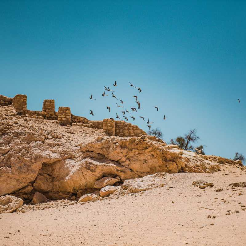 Trip Blog Post by @RoyMrad: THE LOST CITY OF UBAR 🇴🇲 | 1 day in Jun (itinerary, map & gallery)