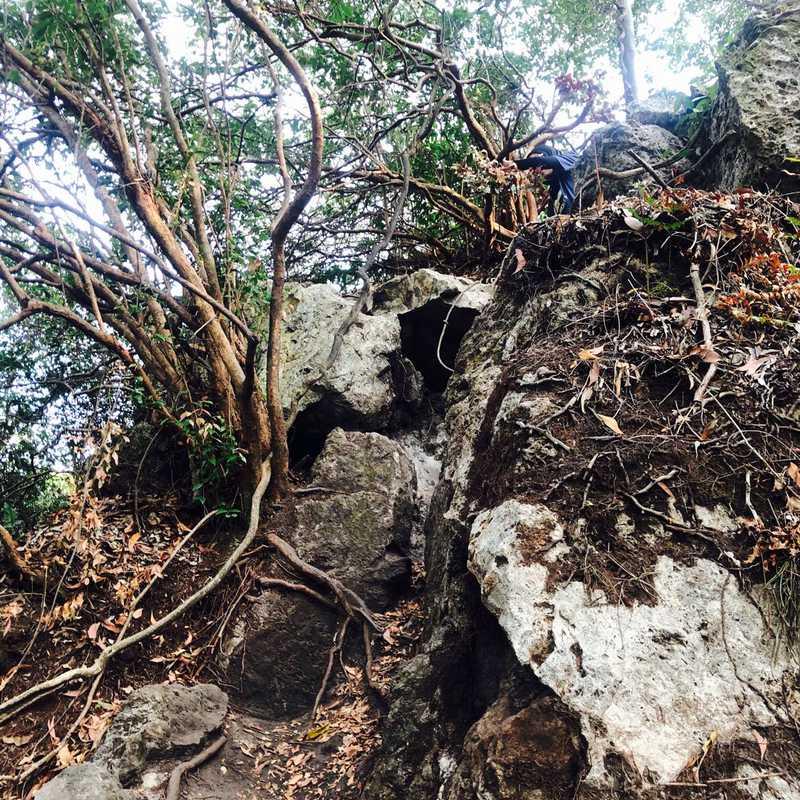 The spectacular View Bukit Batu Putih