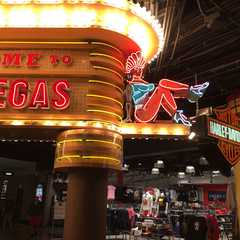 MGM Grand - Photos by Real Travelers, Ratings, and Other Practical Information
