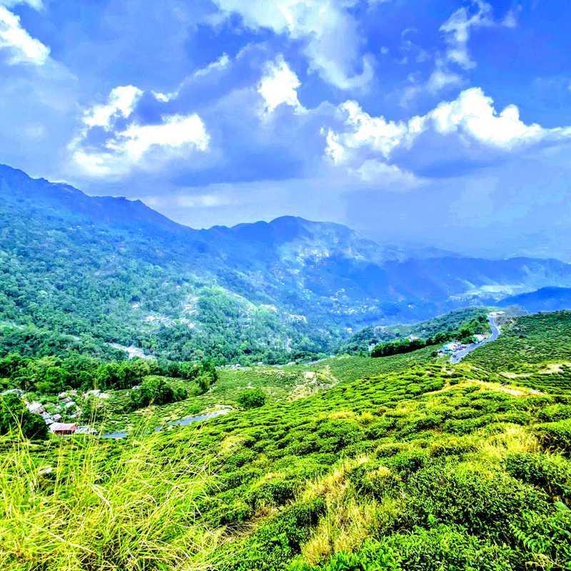 Trip Blog Post by @sudipmajumder04: Sandakhphu, India Apr-2021 | 4 days in Apr (itinerary, map & gallery)