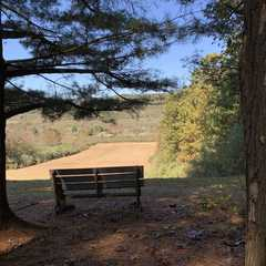 Bald Eagle State Park | POPULAR Trips, Photos, Ratings & Practical Information