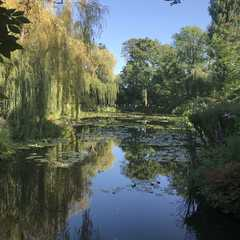 Water Garden - Photos by Real Travelers, Ratings, and Other Practical Information