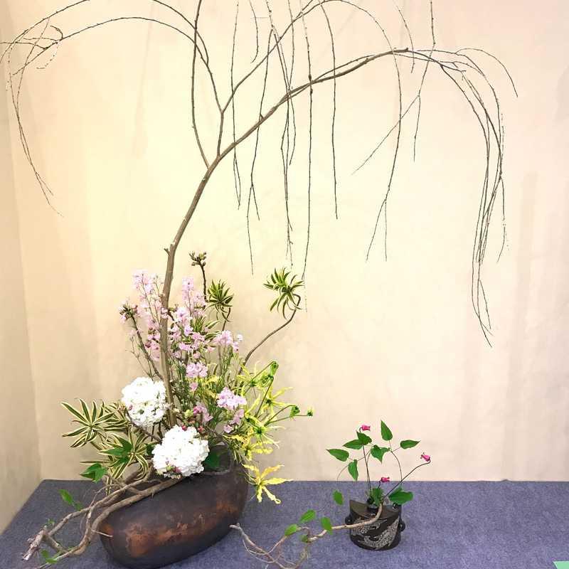 Ikebana Flower Show