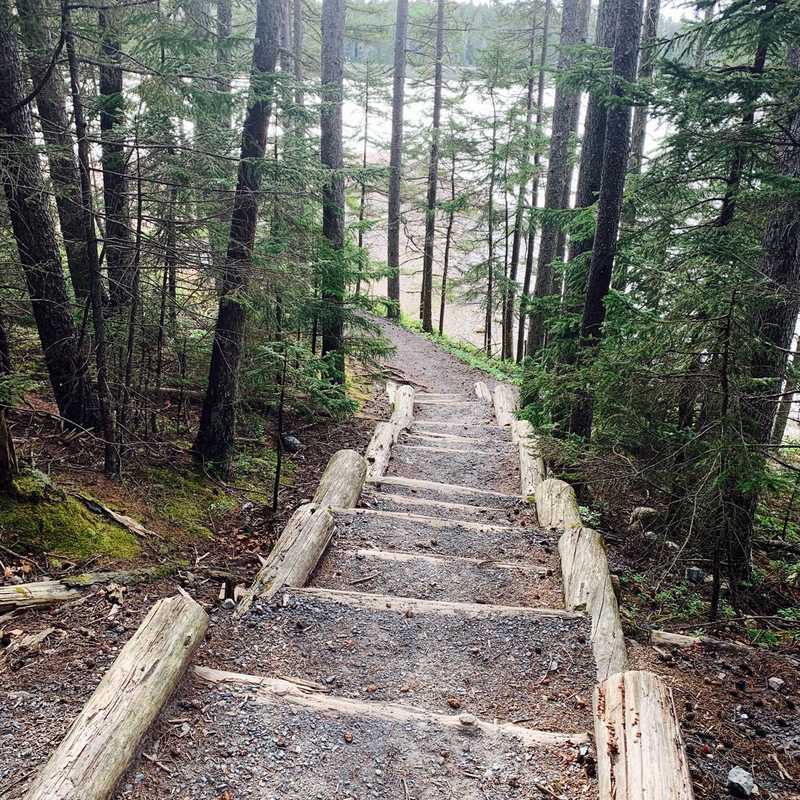 Ship Harbor Trail