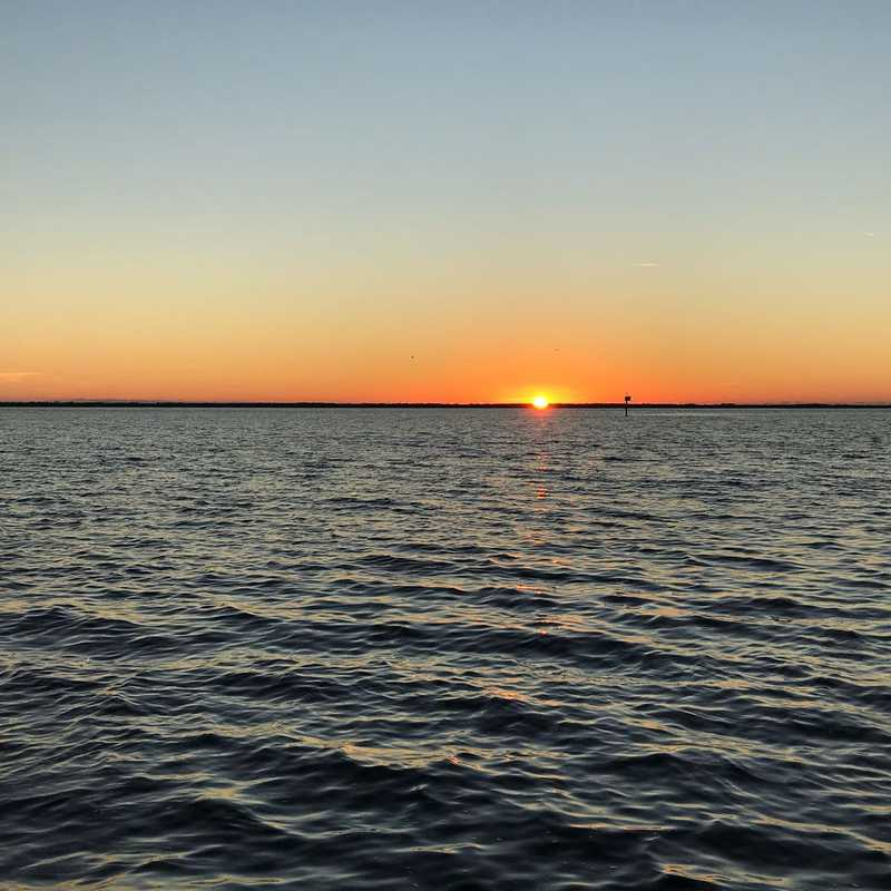 Dolphin & Sunset Cruise - Cape Coral