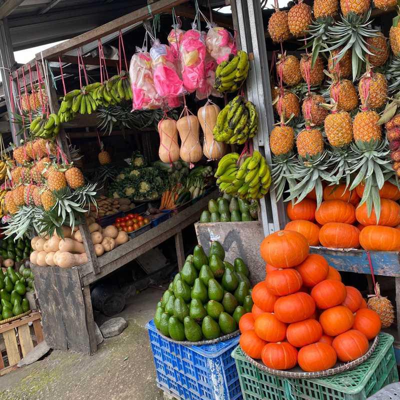 Jongko Sayuran Dan Buah
