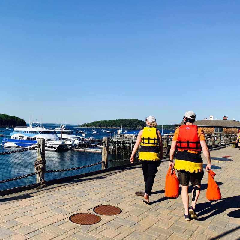 Coastal Kayaking Tours