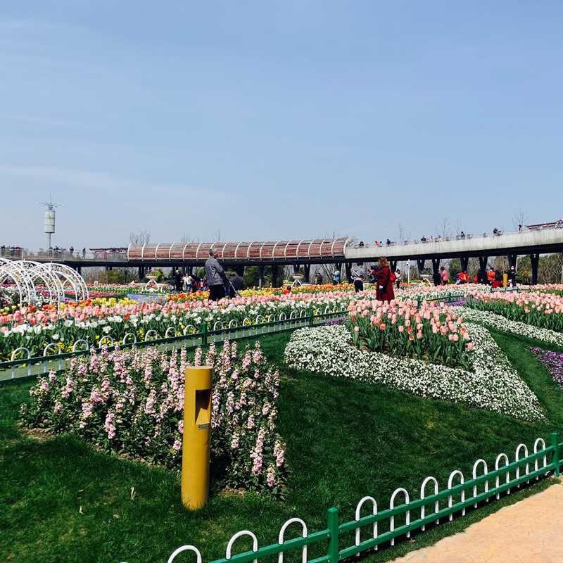 Pujiang Jiaoye Park
